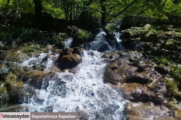 طبیعت بهاری سرآسیاب سیدان