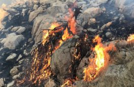 آتش سوزی در کوه رحمت مشرف به مجموعه جهانی تخت جمشید