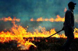 برخورد قضایی با عوامل سوزاندن بقایای کشاورزی
